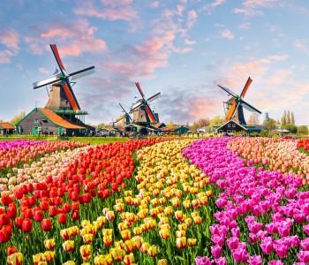 Les Pays-Bas (Hollande)