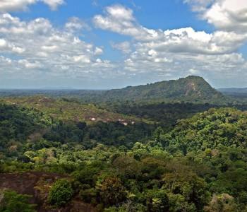 Le Surinam