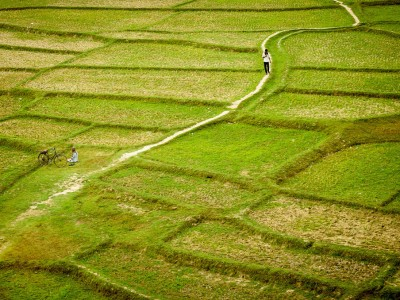 Bangladesh : Rajshahi / Bangladesh / 2012