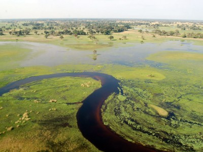 Botswana : Okavango Delta, Botswana