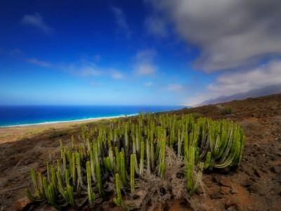 Canaries : Cofete - Explore thanks
