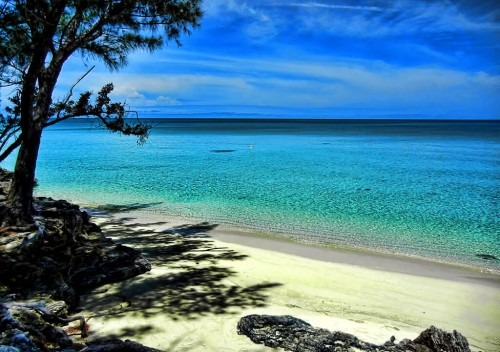 Bahamas : Beach scene at Current, Eleuthera