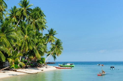 Bornéo - partie indonésienne (Kalimantan) : Pulau Derawan (Kalimantan oriental)