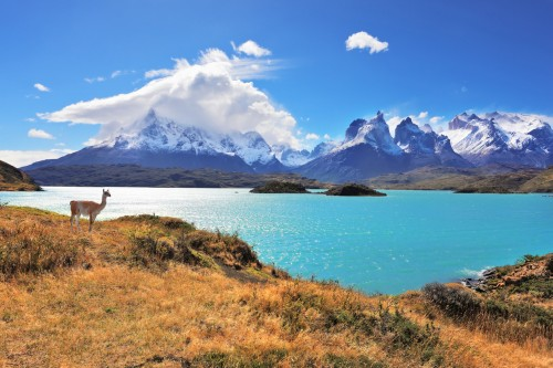 Chili : Lac Pehoe, parc national Torres del Paine dans le sud du Chili
