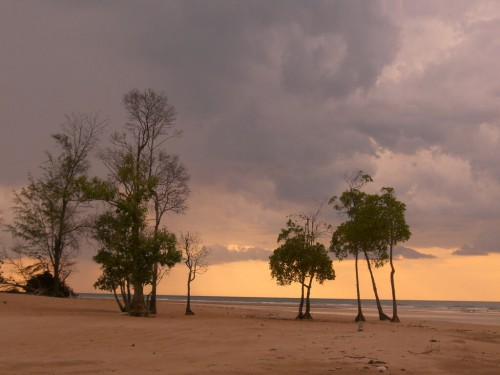 Darwin : Casuarina Beach
