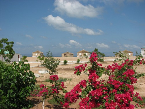 Djibouti : Moucha Island