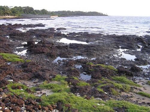 Guinée : conakry beach