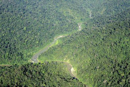 Parc national de Gunung Leuser :