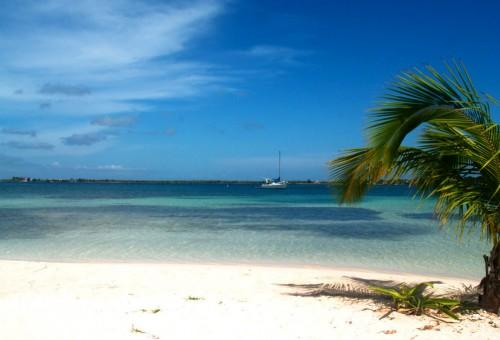 Îles de la Baie (Islas de la Bahía) : Bando's Beach -  Utila