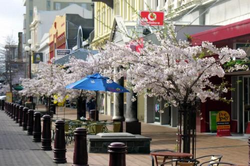 Invercargill : Spring in Esk Street, Invercargill, Southland, New Zealand, 9 September 2005
