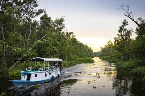 Bornéo - partie indonésienne (Kalimantan) :