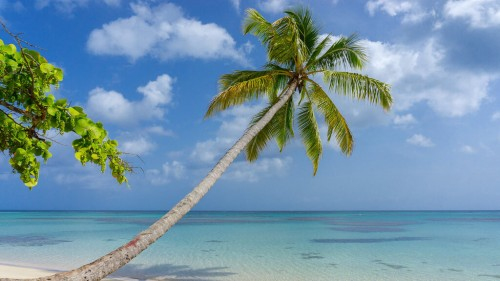 Las Terrenas : caribbean cliche