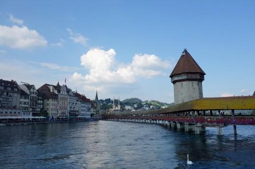 Lucerne :