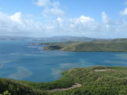 presqu'île de la Caravelle : IMG_1738