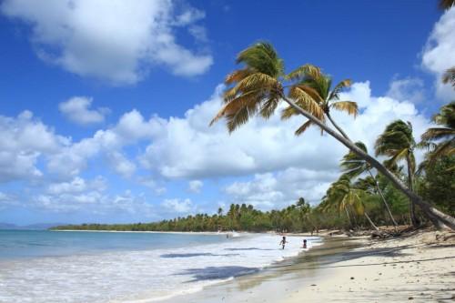 Sainte Anne : Plage des Salines, Martinique, France