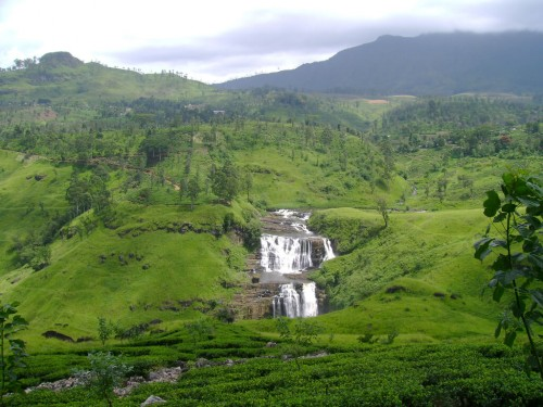 Sri Lanka : Nuwara Eliya, Sri Lanka