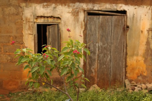 Togo : Kpalime Decay