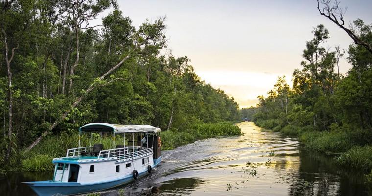 Bornéo - partie indonésienne (Kalimantan)