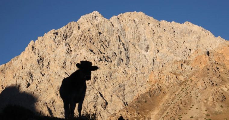 Le Tadjikistan