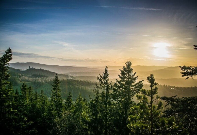 Šumava (Parc national)