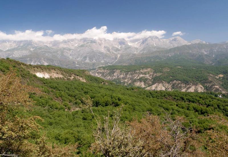 Arslanbob