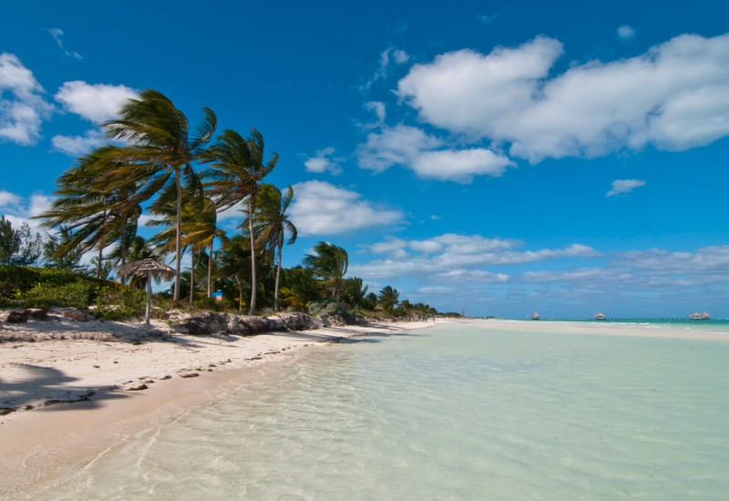 Cayo Guillermo
