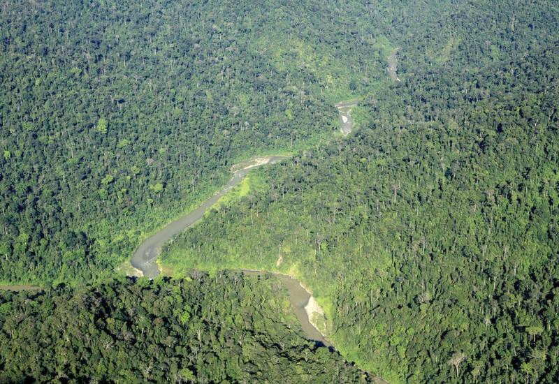 Le Parc national de Gunung Leuser