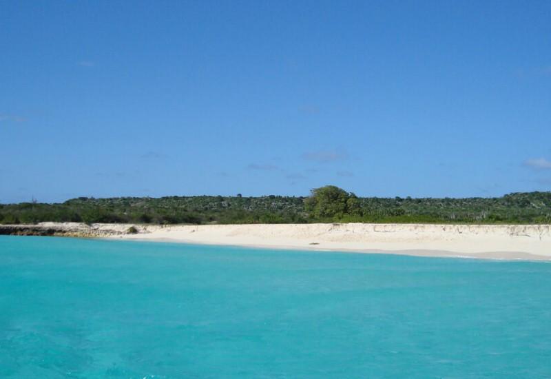 L'île de la Tortue