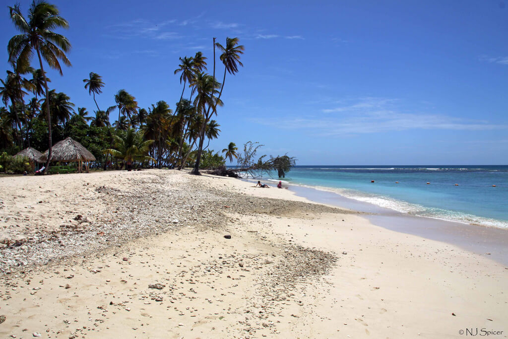 Trinité-et-Tobago : Pigeon Point, Tobago