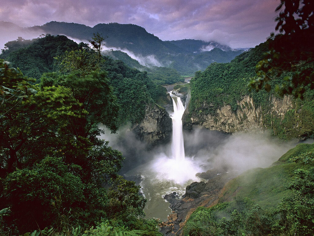 Venezuela : Amazon Rainforest, Venezuela