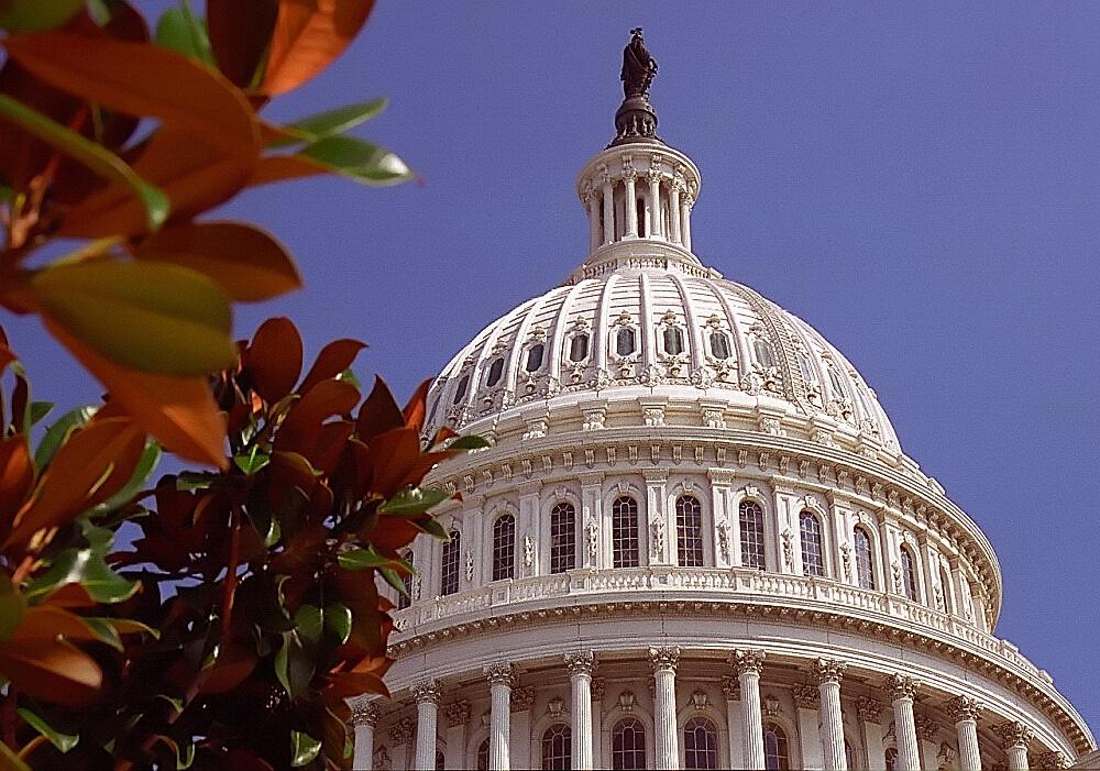 Washington D.C. : Washington D.C. - Capital Building Dome