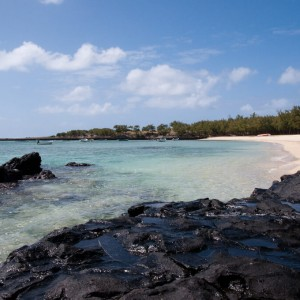 Les îles Rodrigues