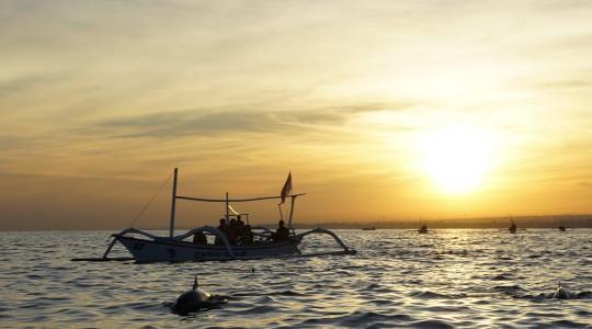 Observer les dauphins à Lovina Beach (Bali) : un piège à touristes ?
