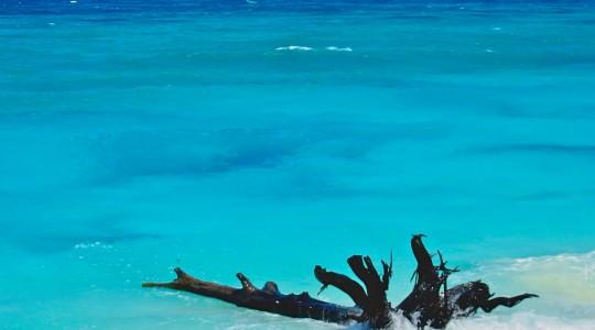 Seychelles ou Maldives : quelle île choisir ? Notre comparatif