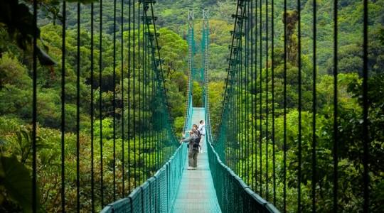 A la découverte de la réserve de Monteverde au Costa Rica