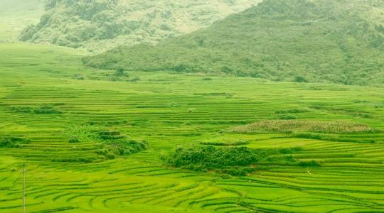 Mousson au Vietnam : voyager durant la saison des pluies c'est possible ?