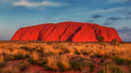 Australie ou Nouvelle-Zélande : Que choisir ? Kangourous ou Kiwis ?