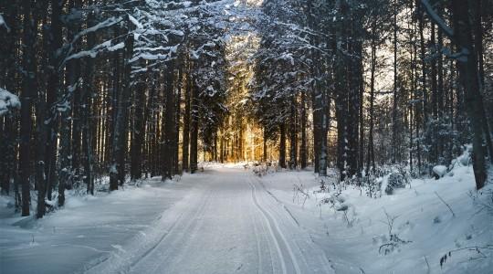 Où et quand partir faire du ski en Australie ? Les stations et la saison