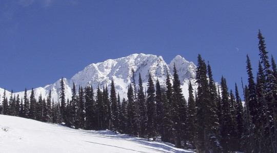 Où et quand partir skier au Canada ? Les stations et la saison