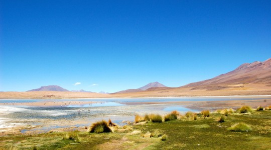 Quel pays visiter en Amérique du sud cet été (juillet-août) ?