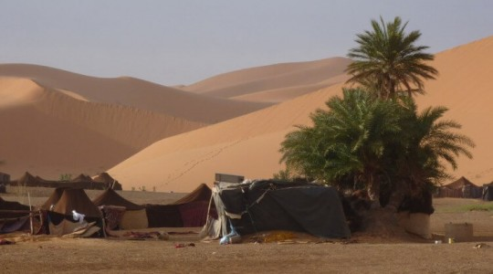 Le désert de Dubaï : les meilleures activités et safaris à faire à Dubaï