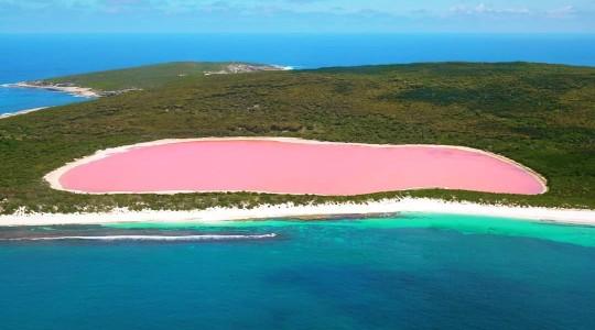 Un lac rose en Australie : percez les secrets du Lac Hillier !