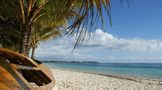 Île Maurice ou Réunion : quelle île choisir pour vos prochaines vacances ?