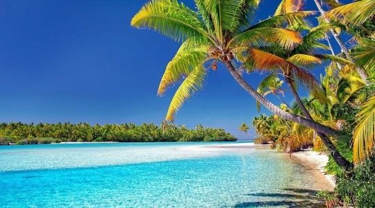 Îles paradisiaques du monde : où et quand partir pour vos prochaines vacances ?