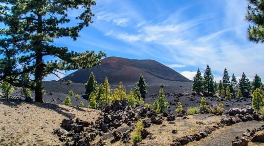 Tenerife ou Gran Canaria (Grande Canarie) : Où partir en vacances ? Notre avis.